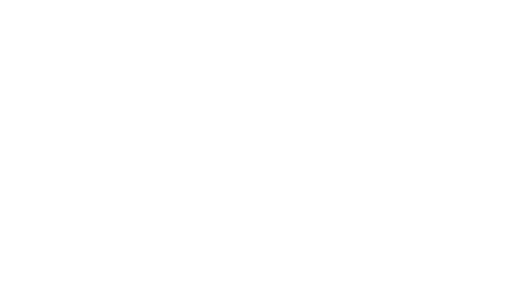 Mantis Digital Web Design client: Tahi Honey